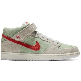 Nike SB Dunk Mid Pro Todd Bratrud QS sail gym red fresh mint