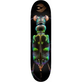 Powell Powell Peralta Flight Bliss deck Tiger Beetle 8.25""